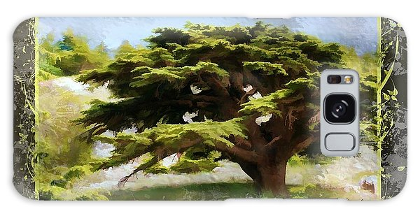 Do-00318 Cedar Barouk - Framed Galaxy Case by Digital Oil