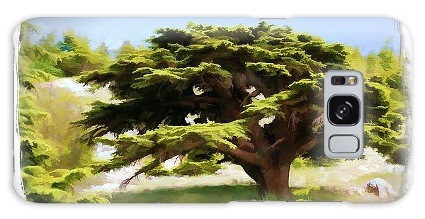 Do-00319 Cedar Tree Galaxy Case by Digital Oil