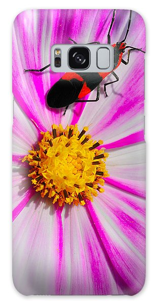Do I Clash With This Flower? Galaxy Case