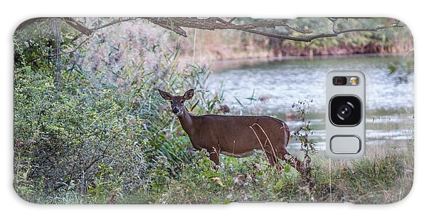 Doe Under Arching Branches Galaxy Case by Chris Bordeleau