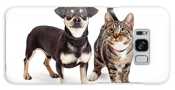 Dog And Cat Standing Looking Up Together Galaxy Case
