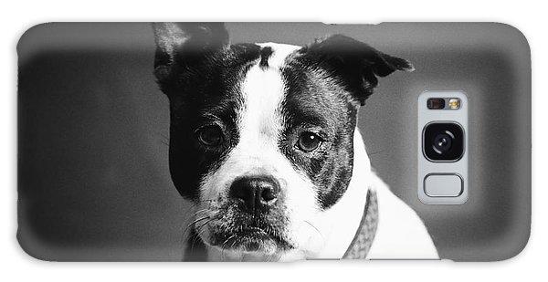 Dog - Monochrome 1 Galaxy Case