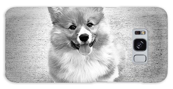 Puppy - Monochrome 6 Galaxy Case