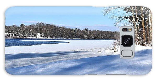 Dog Pond In Winter 1 Galaxy Case