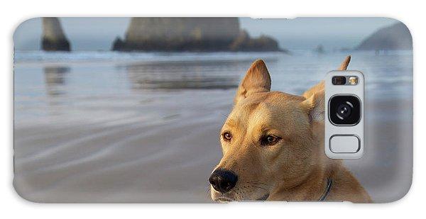 Dog Portrait @ Cannon Beach Galaxy Case