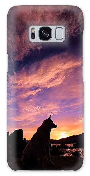 Dogs Dream Too  Galaxy Case