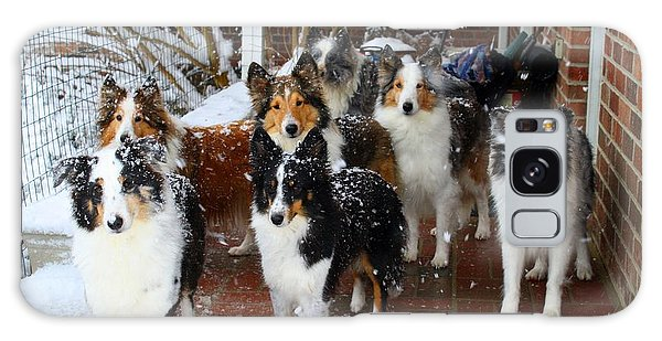 Dogs During Snowmageddon Galaxy Case