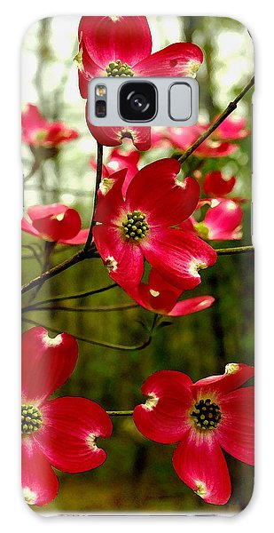 Dogwood Blooms In The Spring Galaxy Case