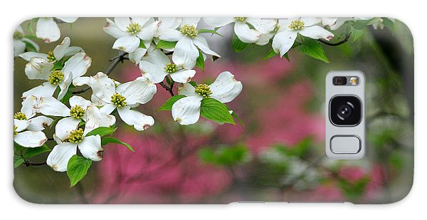 Dogwood Days Galaxy Case by Living Color Photography Lorraine Lynch