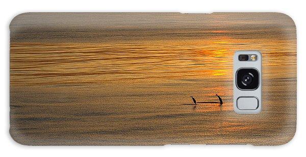 Dolphin Sunset Galaxy Case