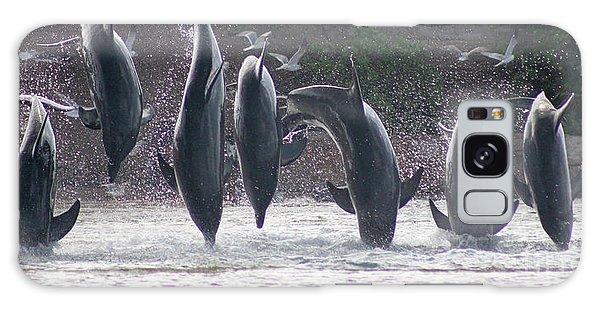 Dolphins Jump Galaxy Case