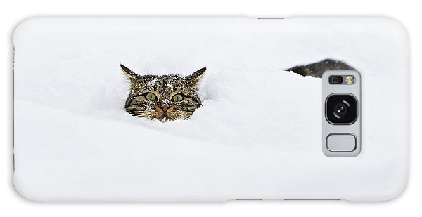 Galaxy Case featuring the photograph Domestic Cat Felis Catus In Deep Snow by Konrad Wothe
