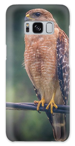 Galaxy Case featuring the photograph Dominique The Hawk by Michael Sussman