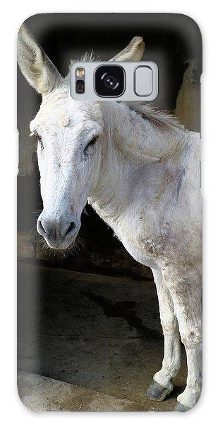 Donkey Hellow Galaxy Case by Scott Kingery