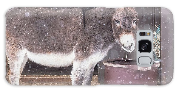Donkey Watching It Snow Galaxy Case