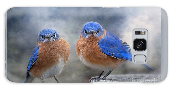 Eastern Bluebird Galaxy Case - Don't Ruffle My Feathers by Bonnie Barry