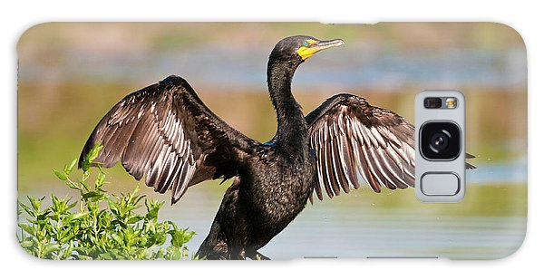 Double-crested Cormorant Galaxy Case by Gary Lengyel