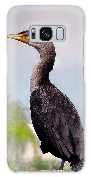 Double Crested Cormorant Galaxy Case