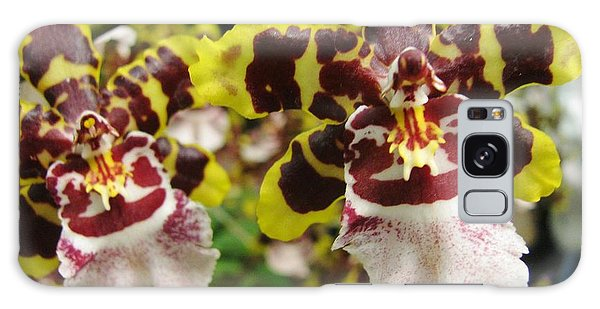 Double Odontoglossum Orchid Galaxy Case