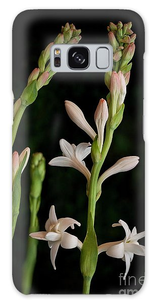 Double Tuberose In Bloom #2 Galaxy Case