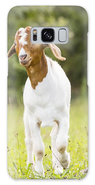 Dougie The Goat Galaxy Case