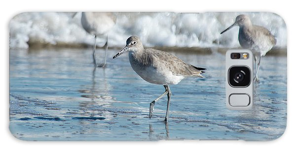 Padre Island National Seashore Galaxy S8 Case - Short-billed Dowitcher by Frank Madia