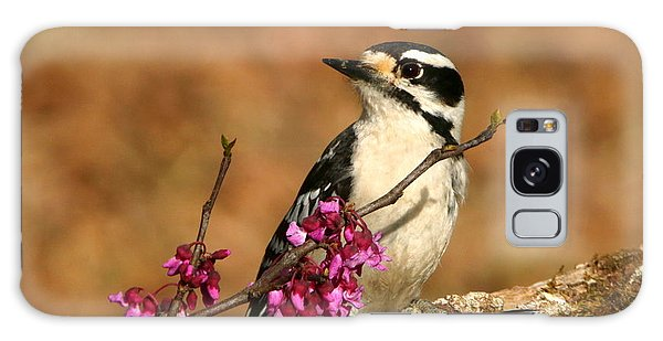 Downy Woodpecker In Spring Galaxy Case by Sheila Brown