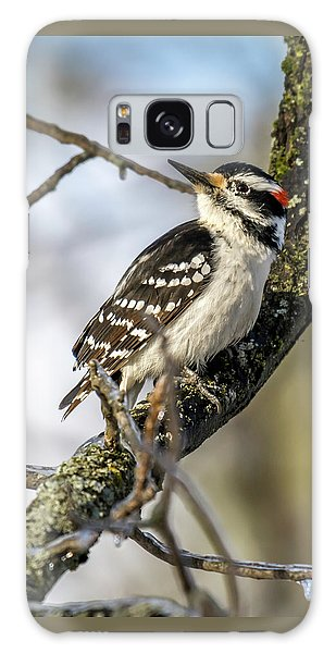 Downy Woodpecker Galaxy Case by Irwin Seidman