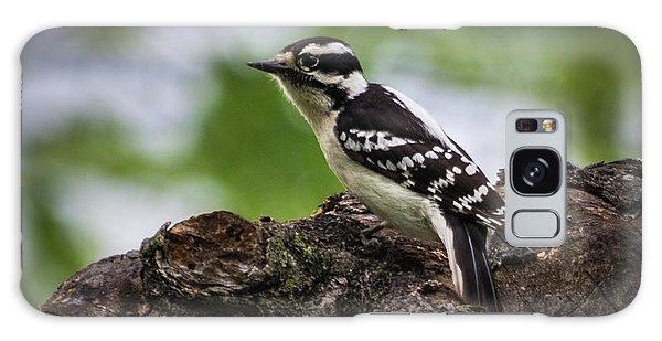 Downy Woodpecker Galaxy Case