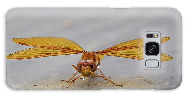 Dragon Fly Hanging Around Galaxy Case
