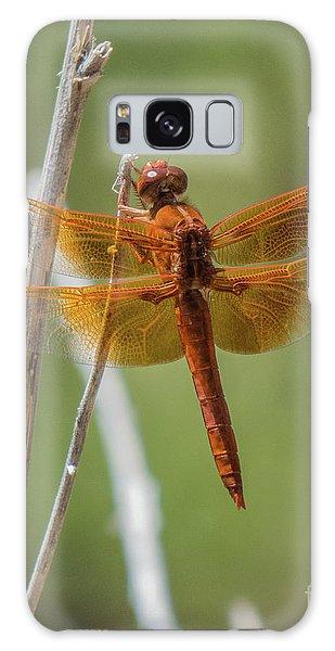 Dragonfly 10 Galaxy Case