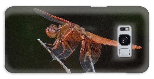 Dragonfly 11 Galaxy Case