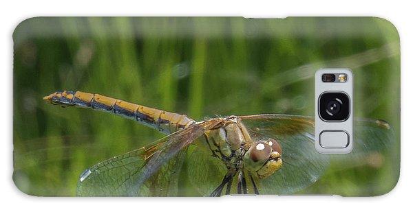 Dragonfly 7 Galaxy Case