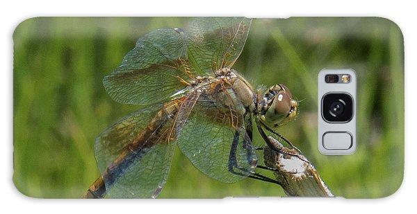 Dragonfly 8 Galaxy Case