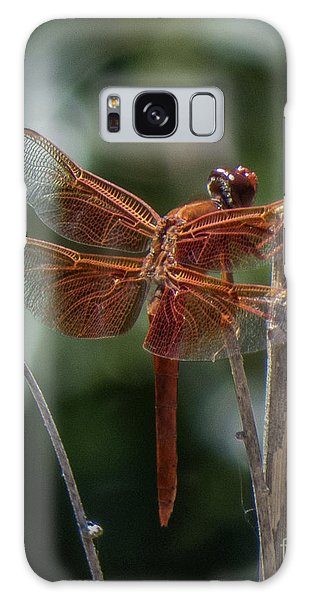 Dragonfly 9 Galaxy Case