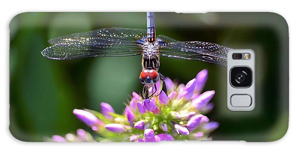 Dragonfly And Phlox Galaxy Case
