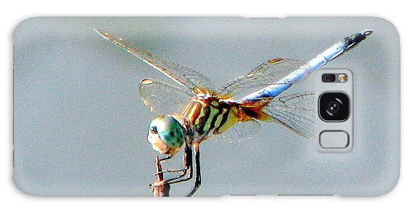Dragonfly At Rest Galaxy Case