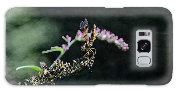 Dragonfly II Galaxy Case