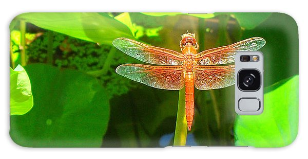 Dragonfly Galaxy Case by Mark Barclay