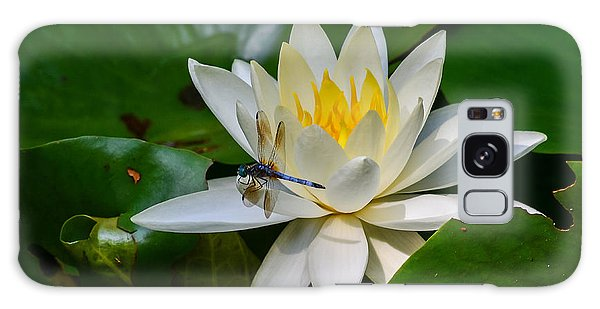 Dragonfly On Waterlily  Galaxy Case by Allen Sheffield