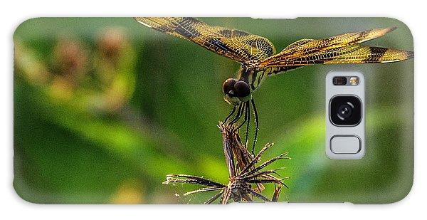 Dragonfly Resting On Flower Galaxy Case