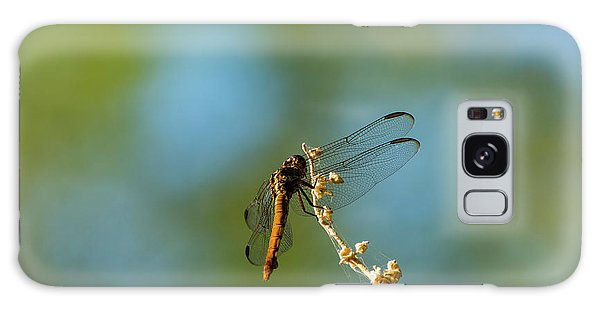 Dragonfly Wings Galaxy Case