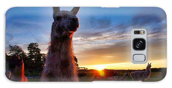 Drama Llamas Galaxy Case