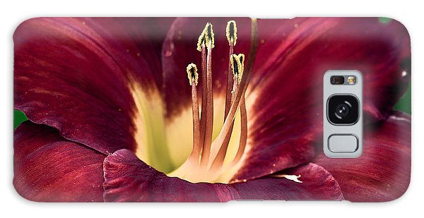 Dramatic Lily Galaxy Case by Jason Moynihan