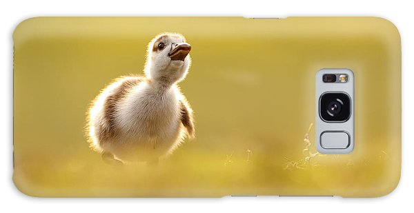 Goose Galaxy Case - Dream Duckie _egyptian Gosling by Roeselien Raimond