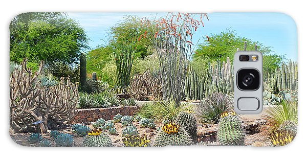 Dreamy Desert Cactus Galaxy Case by Aimee L Maher Photography and Art Visit ALMGallerydotcom