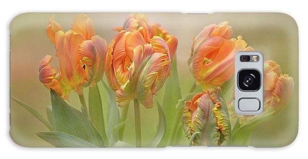 Dreamy Parrot Tulips Galaxy Case by Ann Bridges