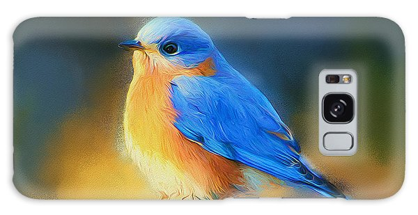 Dressed In Blue Galaxy Case by Tina  LeCour