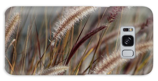 Dried Desert Grass Plumes In Honey Brown Galaxy Case