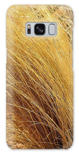 Dried Grass Galaxy Case